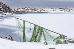 Fishing Nets on Fogo Island