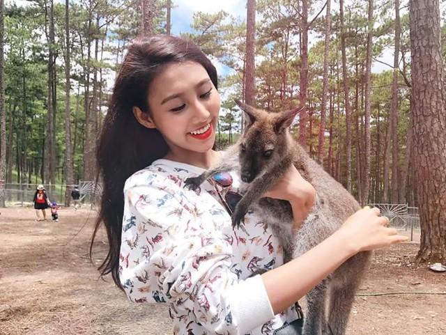 Phượt Hot - Khám phá vườn thú Zoodoo Đà Lạt cực kỳ đáng yêu (21)