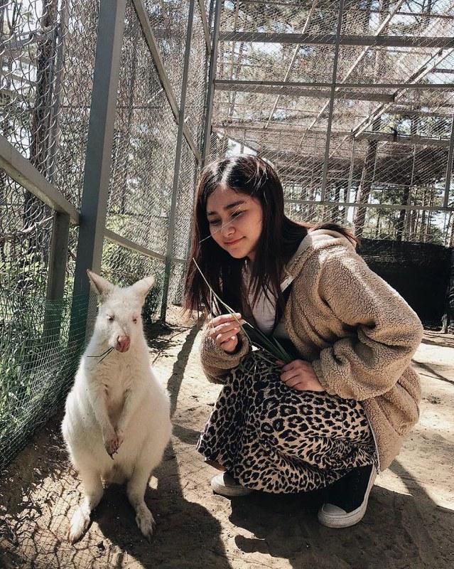 Phượt Hot - Khám phá vườn thú Zoodoo Đà Lạt cực kỳ đáng yêu (22)