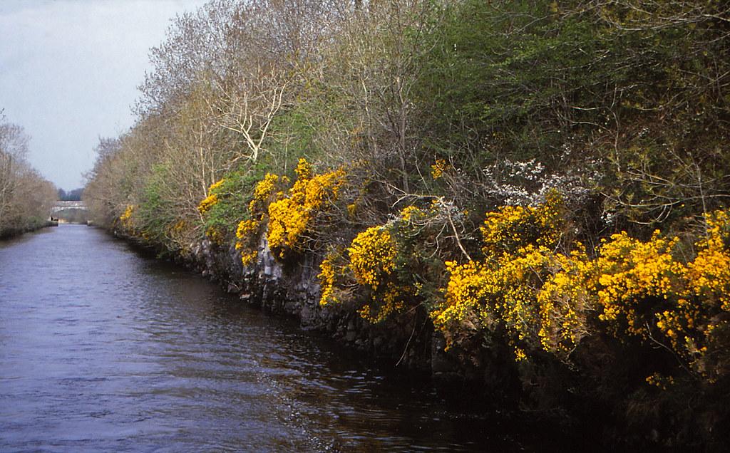 Jamestown Canal