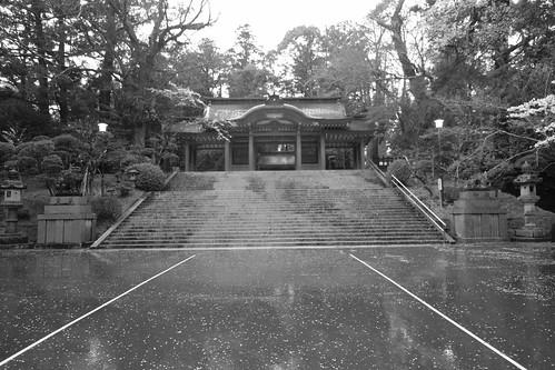 29-03-2020 Katori-Jingu Shrine (5)