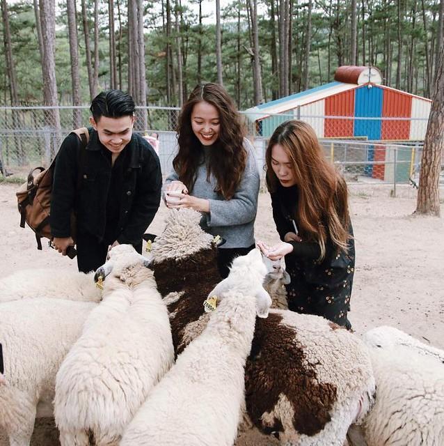 Phượt Hot - Khám phá vườn thú Zoodoo Đà Lạt cực kỳ đáng yêu (28)