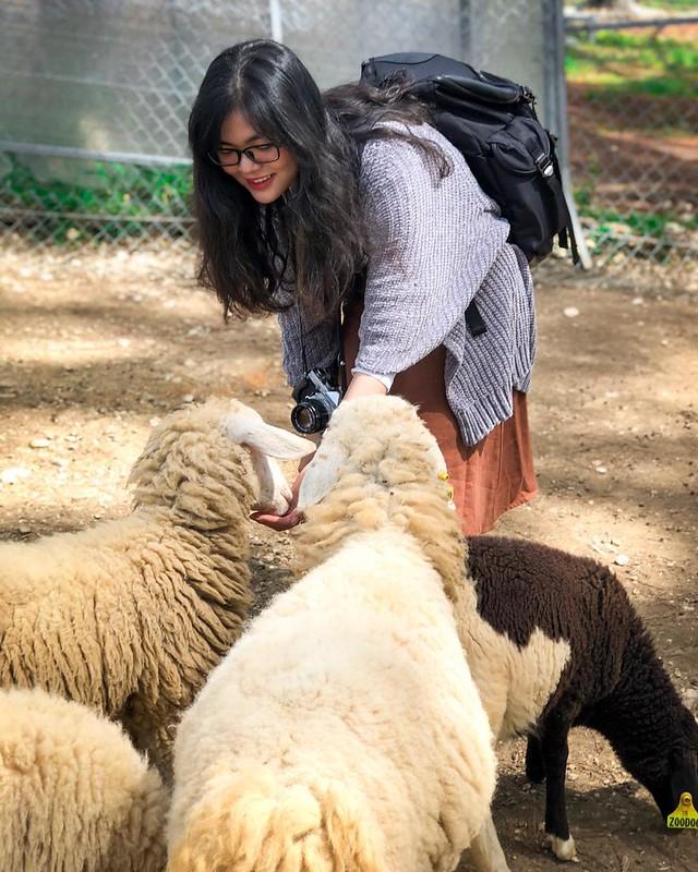 Phượt Hot - Khám phá vườn thú Zoodoo Đà Lạt cực kỳ đáng yêu (2)