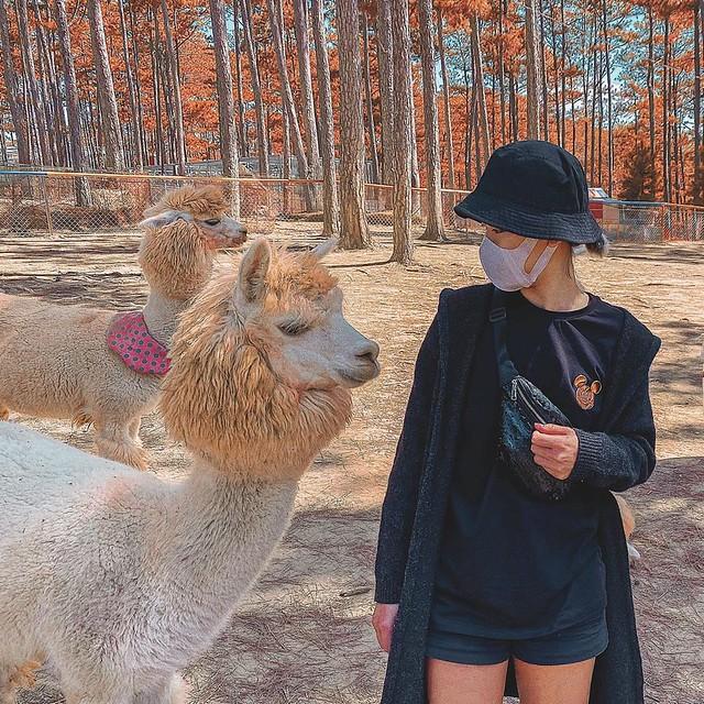 Phượt Hot - Khám phá vườn thú Zoodoo Đà Lạt cực kỳ đáng yêu (12)