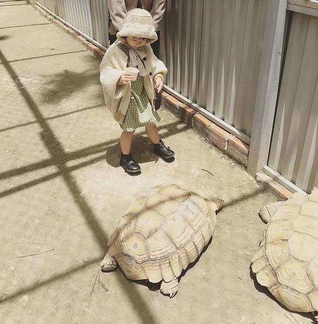 Phượt Hot - Khám phá vườn thú Zoodoo Đà Lạt cực kỳ đáng yêu (33)