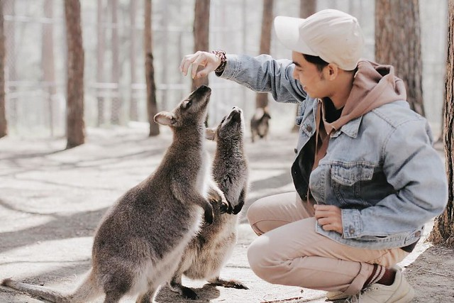 Phượt Hot - Khám phá vườn thú Zoodoo Đà Lạt cực kỳ đáng yêu (31)