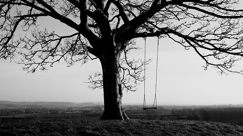 burrowhill tree swing view landscape monochrome blackandwhite blackwhite bw grey black white somerset south sitting sky sit composition nature england light life thinking think thought thoughtful relaxing reflection reflections relax reminiscence reminisce photography photograph peaceful perspective bright englishcountryside space time hill canon canoneos750d canon750d winter bare bleak atmosphere atmospheric wood southwest dream dreamlike dreamy