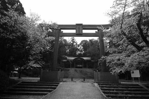 29-03-2020 Katori-Jingu Shrine (4)