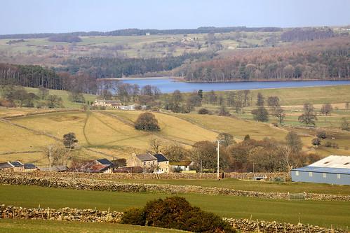 swinstyreservoir yorkshirewater washburnvalley landscape farmland farming countryside adayinthecountry northyorkshire nearotley farmbuildings drystonewalls farmhouses landscapesdreams england