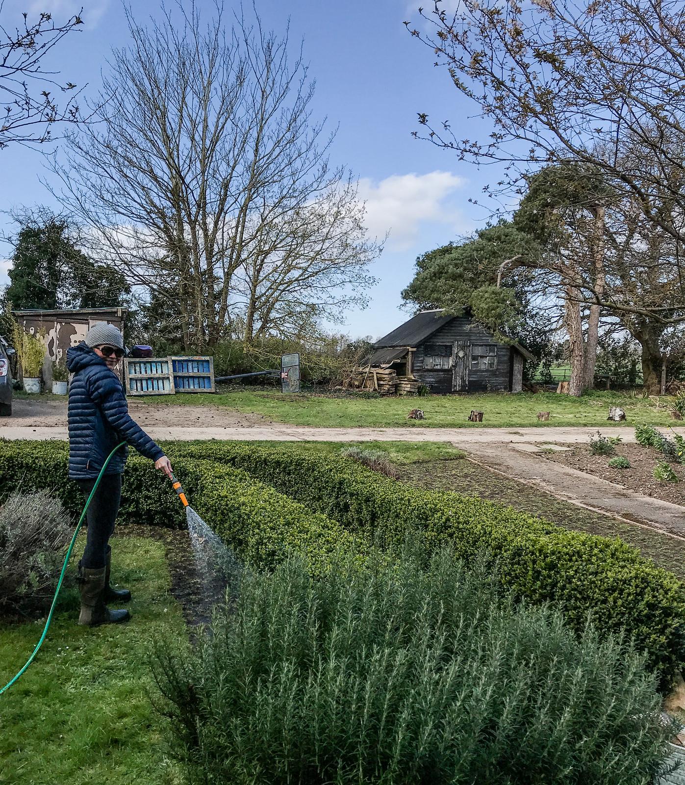 Washing the gardens