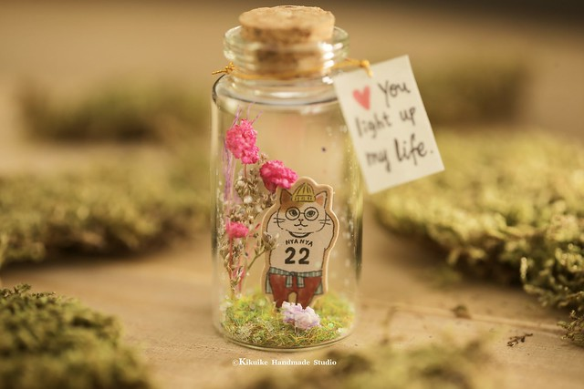 handmade kitty decor, cute animals home decor, Tiny message in a bottle, Personalised gift, Valentine Card, Gift for her/him,Girlfriend gift, birthday card, holiday card and funny card ideas