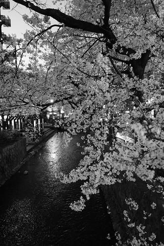 29-03-2020 Kyoto (9)