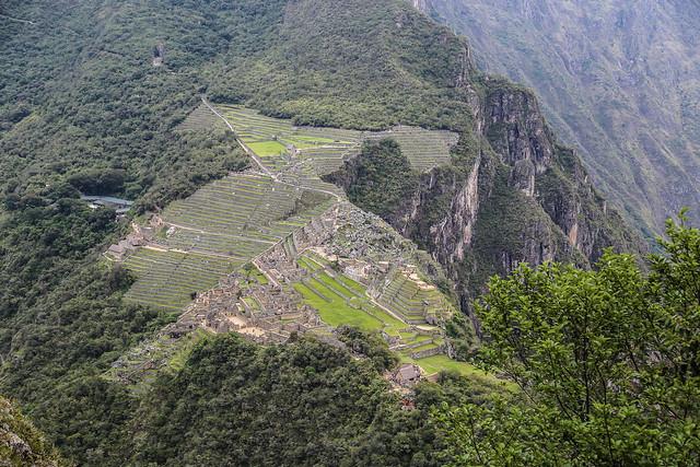 Machu Picchu, The Condor