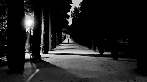 retiro parquedelretiro madrid spain street españa nikon urbanas sky cielo sunset anochecer dusk crepuscular nightime atardecer sunrise amanecer silueta silhouette light luz lights luces shadow sombras sombra contrast contraste backlight walking andando landscape paisaje dark oscuro black negro atmosphere atmosfera winter invierno perspective perspectiva composition point view vista trees ciprés learuizdonoso
