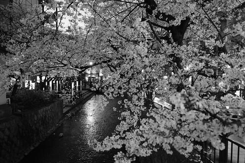 29-03-2020 Kyoto (10)