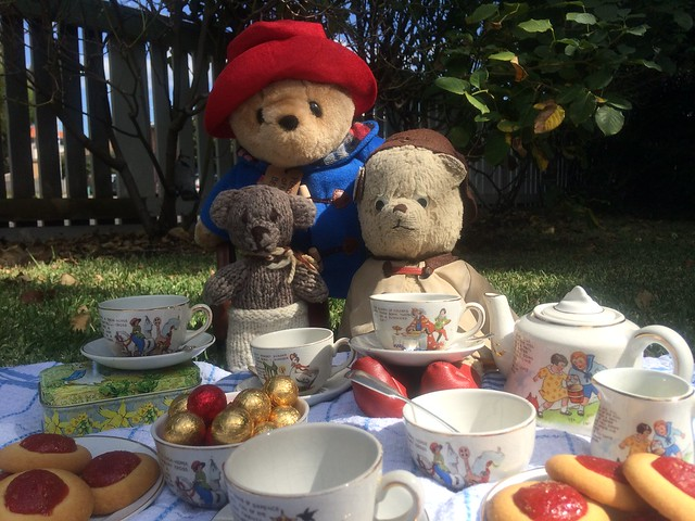 Tea on the Lawn with Paddington and Scout