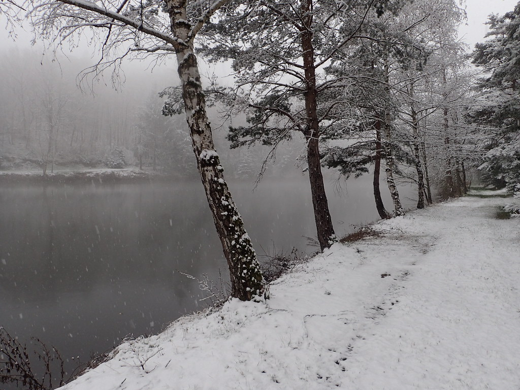 Home - confins - etangs -neige