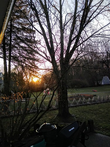 covid19 sunrise pandemic march spring michigan usa 2020