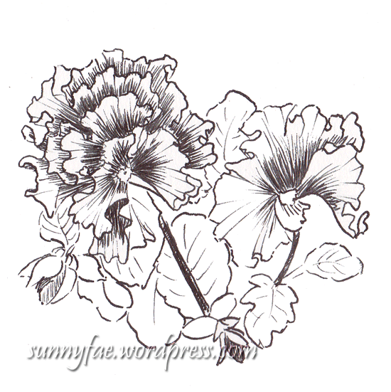 ink pen frilly pansy
