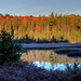 Early Morning, Autumn Colours in Algonquin Provincial Park, Onta