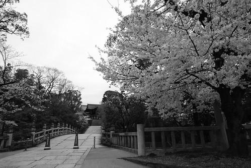 30-03-2020 Kyoto vol01 (26)