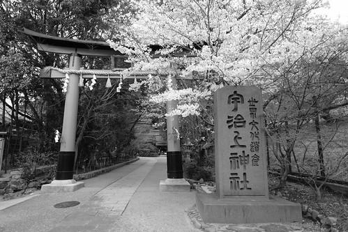 30-03-2020 Kyoto vol01 (92)