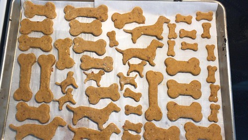 Carleton Place - Dog cookies