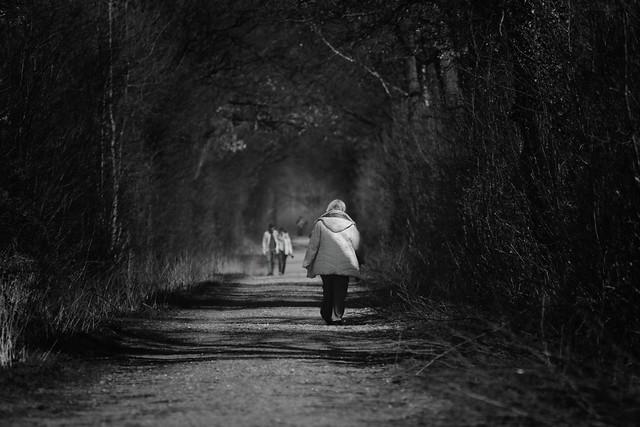 Walk of life....[in explore]