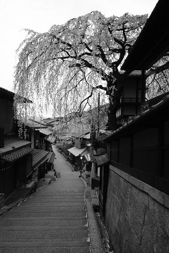 30-03-2020 Kyoto vol01 (24)