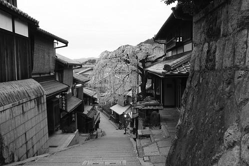 30-03-2020 Kyoto vol02 (14)