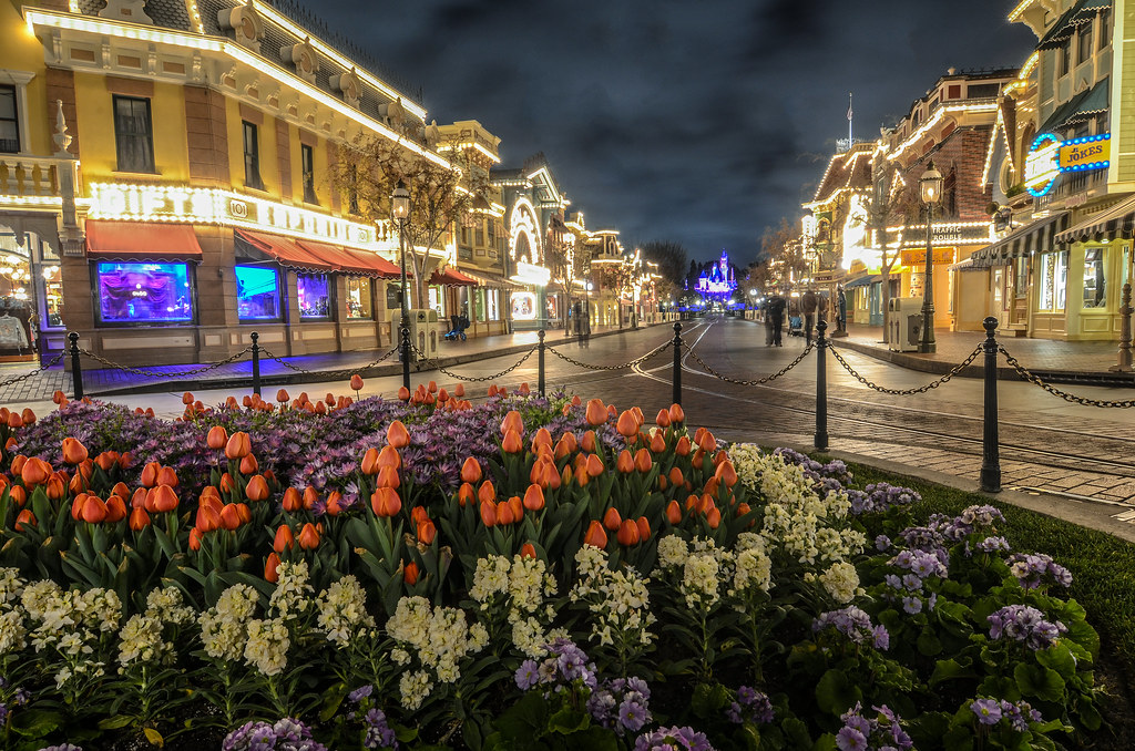 Main Street Castle night flowers DL