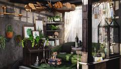 Bringing nature indoors