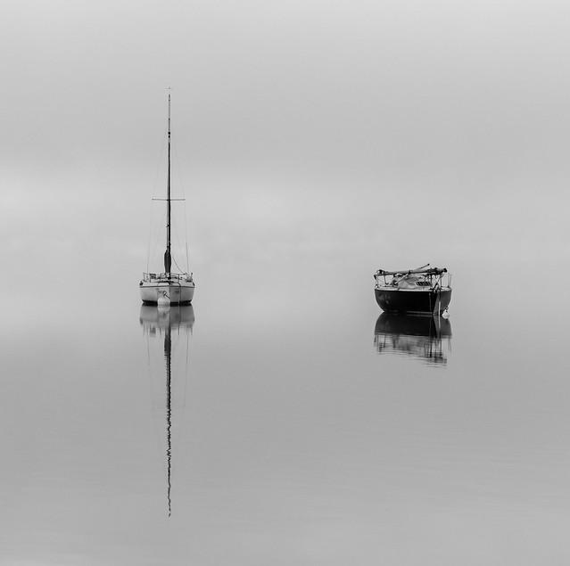 Misty Duo