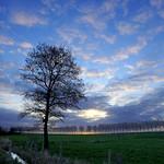 29. Märts 2020 - 6:51 - Environs de Bresles - Oise