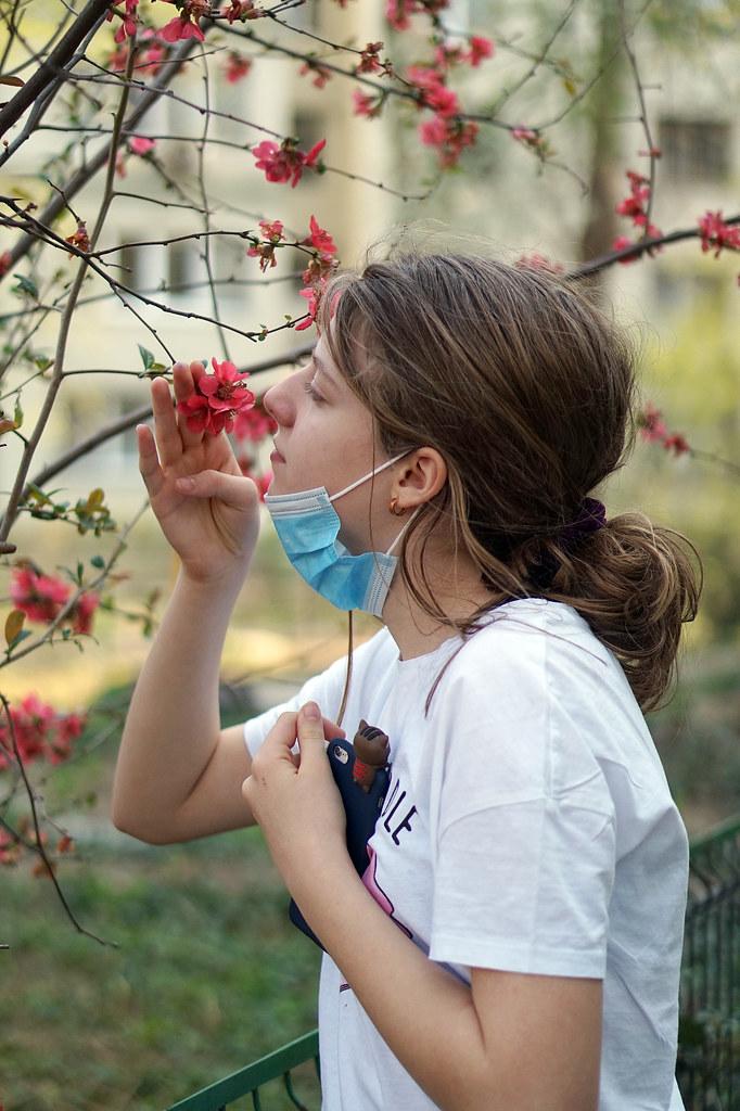 Primăvara în timpul pandemiei