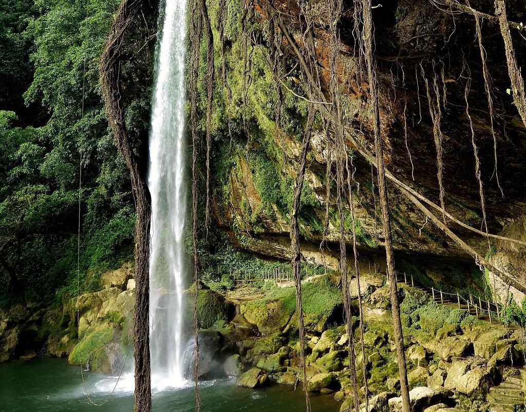 MEXICO, Chiapas , Wasserfall von Misol Ha, nahe Palenque , 19630/12529