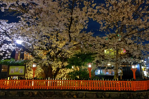 30-03-2020 Kyoto, Gion-Shirakawa in evening (4)