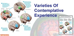 Poster : Varieties Of Contemplative Experience