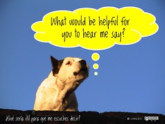 What would be helpful for you to hear me say? #roofdog