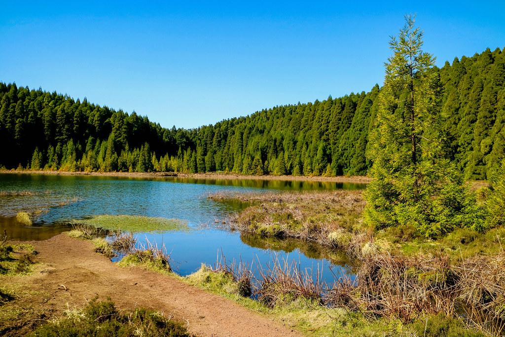 Orilla del lago Lagoa do Canario