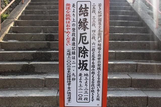 kimiidera-sakura004