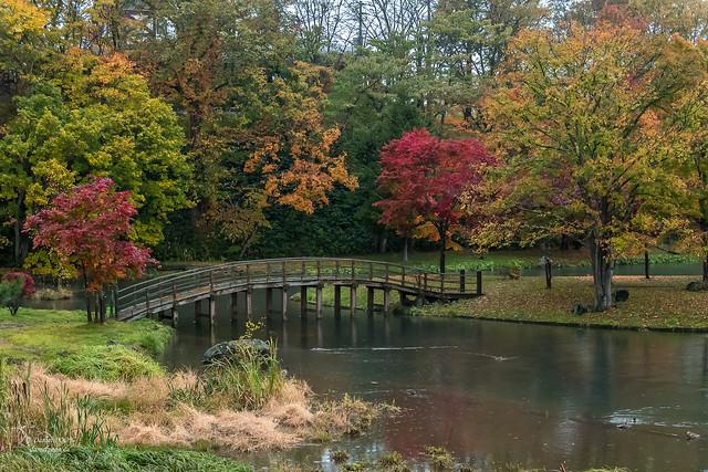 Fall Foliage - Fukidashi park in Kyogoku (Hokkaido prefecture)