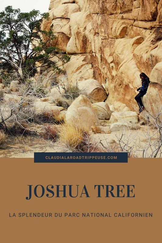 Joshua Tree canva pour Pinterest
