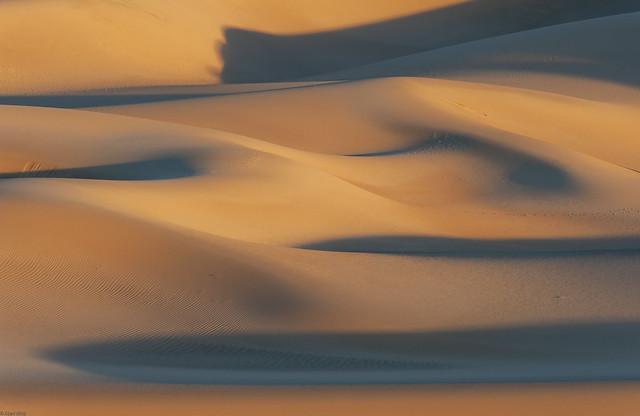 *golden hour in the dunes*
