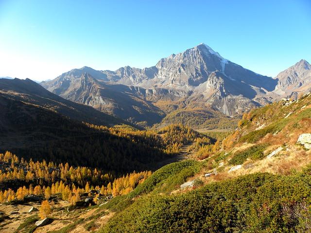Alpe Veglia_028_Pian Sas Mor_Valgrande-Leone-Terrarossa_10-17