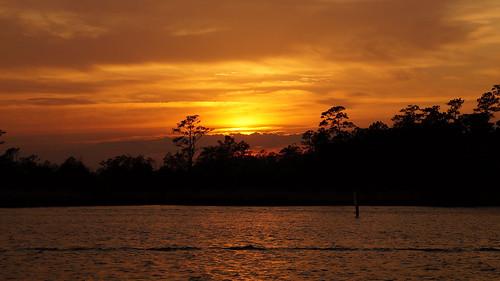 sunset sunsetsandsunrisesgold sony sonyphotographing sonya58 spectacularsunsetsandsunrises cloudsstormssunsetssunrises cloudscape cravencounty forest creek