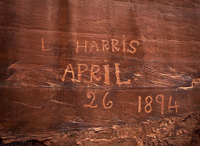 L. Harris 1894