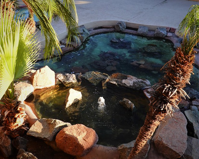 Cascading Pool SR602332