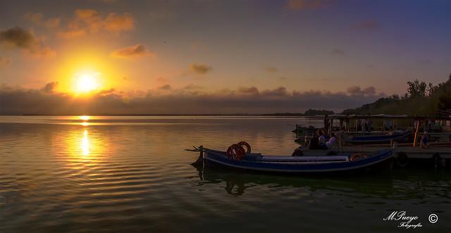 mirando la puesta de sol (Albufera valenciana )