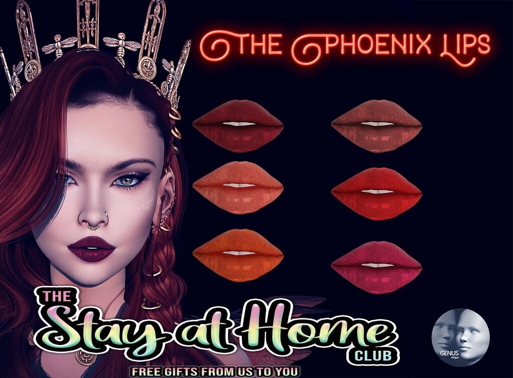 Voodoo - Stay At Home - Phoenix Genus